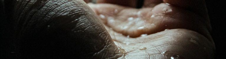 """Sensazioni all'ascolto: """"Sicut cervus"""" di Giovanni Pierluigi da Palestrina"""